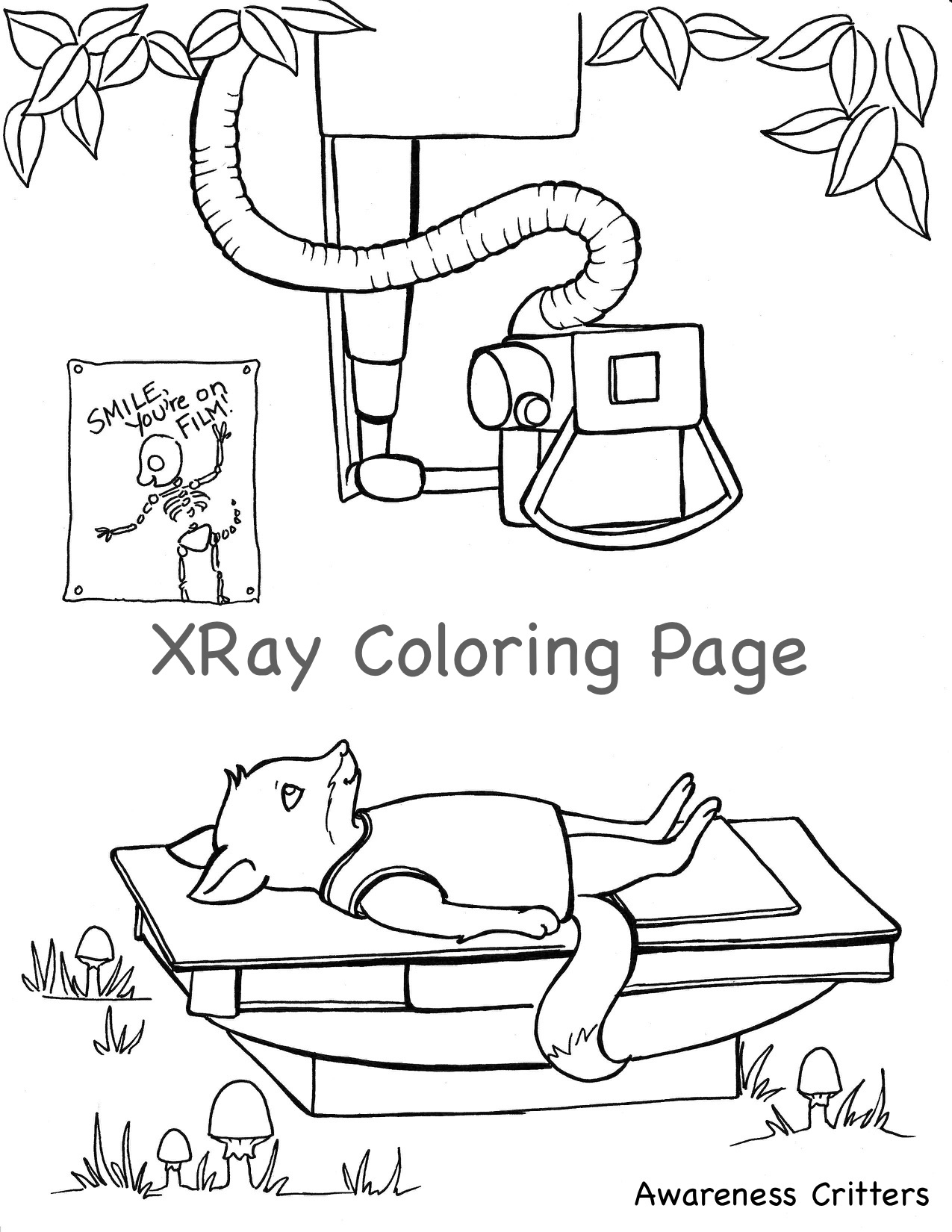 X ray coloring sheets - General Awareness Critter Coloring Pages